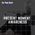 Present Moment Awareness Cover Art- The Shek Check